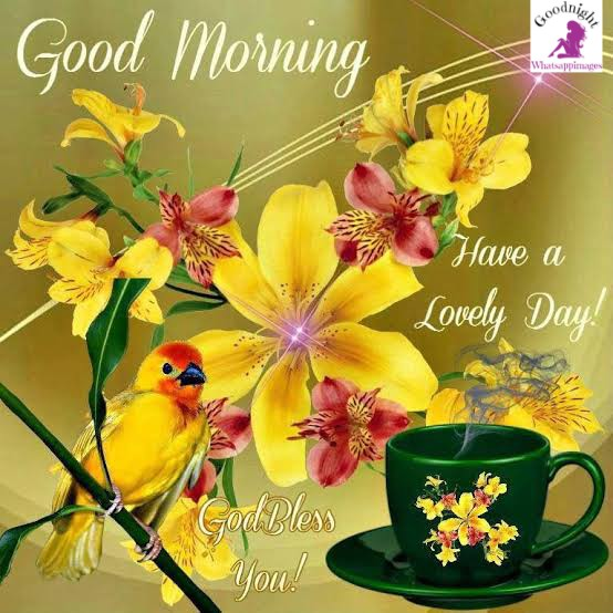 Good Morning Images With Tamil Quotes , God Good Morning Pics , Sad Alone Images , Love Breakup Images , Whatsapp DP , Bewafa Shayari Images , Flower Good Night Images , God Good Night , Hindi Good Morning Pics , Ganesha Good Morning Pics , Baby Good Morning Images , Cute Whatsapp DP Pics , Good Morning Images With Radha Krishna , Good Morning Images for Lover , Mangalwar Good Morning Images , Beautiful Good Night Images ,